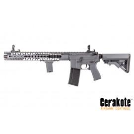 Evolution-Dytac LA M4 Carbine Wolf Grey Lone Star Edition